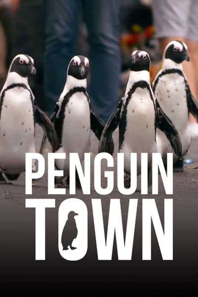 Penguin Town S01E06 1080p HEVC x265-MeGusta