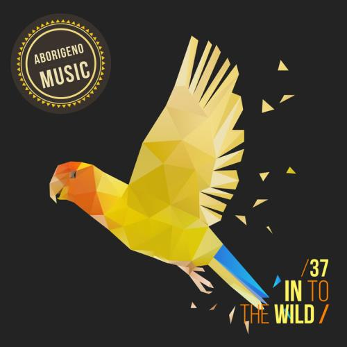 In To The Wild — Vol. 37 (2021) FLAC